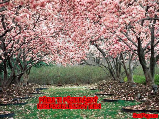 img_bestpage3414.jpg